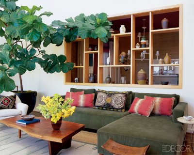 interior-decorating-house-plants