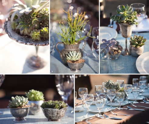 succulent+table+decorating