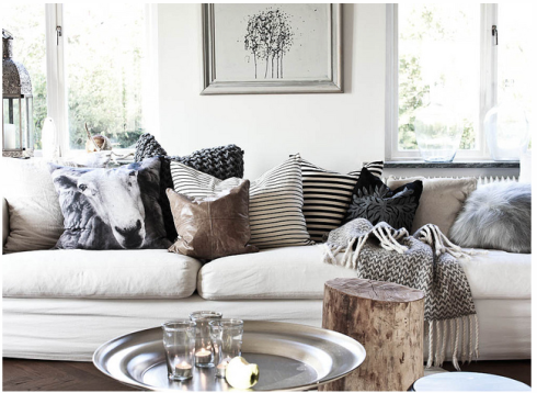 Modern living room sofa pillows